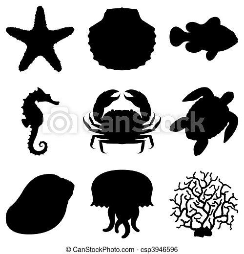 Sea animals. - csp3946596