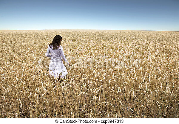 A young girl stands with his back to the camera in a field of rye, touching hands ears. Against the background of blue sky. Landscape. - csp3947813