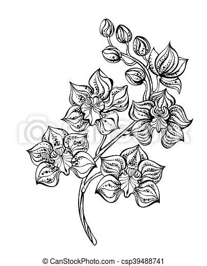 eps vektor von kontur orchidee k nstlerisch gemalt kontur schwarz csp39488741 suchen. Black Bedroom Furniture Sets. Home Design Ideas