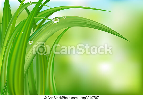 Green Background With Grass - csp3949787