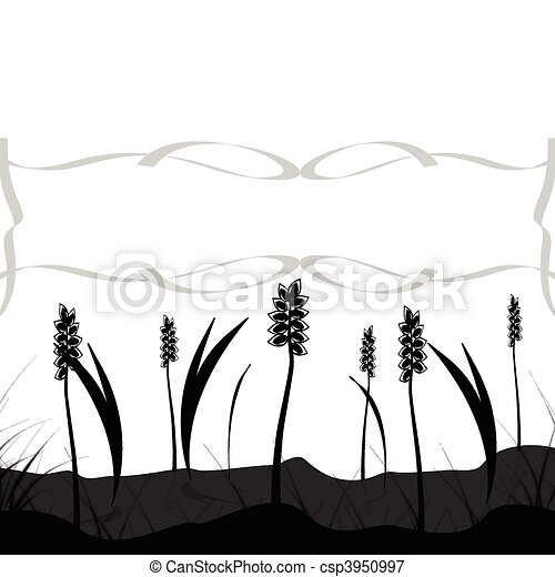 grain field - csp3950997