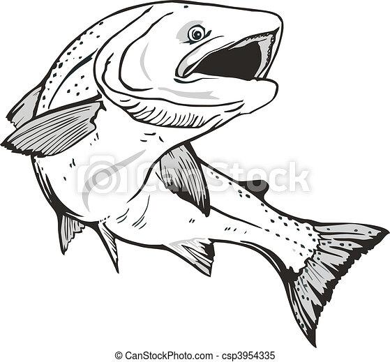 Salmon fish - csp3954335