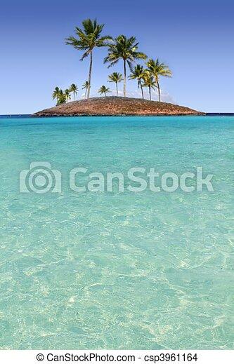 turquesa, ilha, árvore, tropicais, palma, paraisos , praia - csp3961164