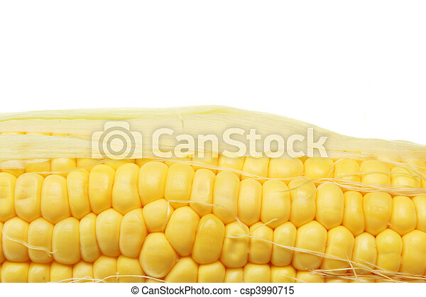 Sweetcorn closeup - csp3990715