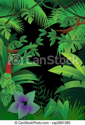 Jungle background - csp3991385