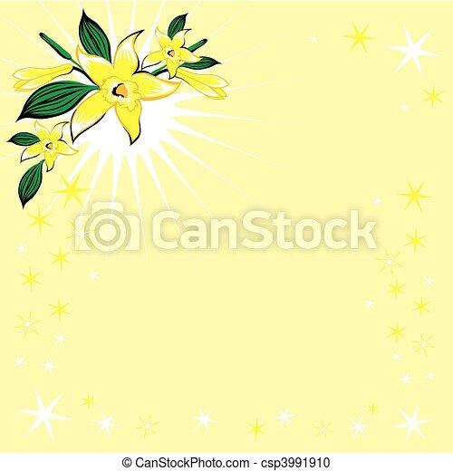 Vanille, bloem, sterretjes - csp3991910