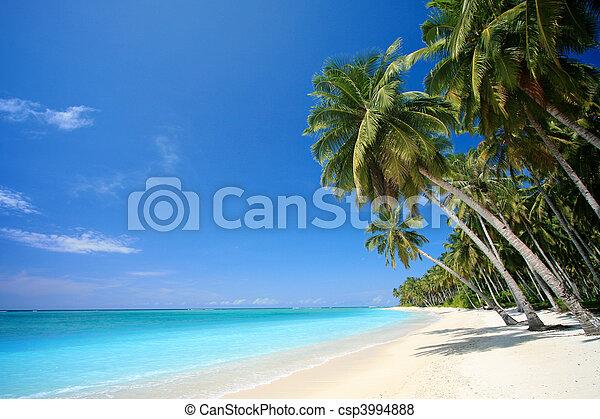 Perfect tropical island paradise beach - csp3994888