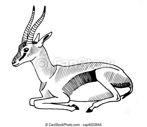Dessin de thompson 39 s gazelle encre dessin de a thompson 39 s csp4003844 recherchez - Gazelle dessin ...