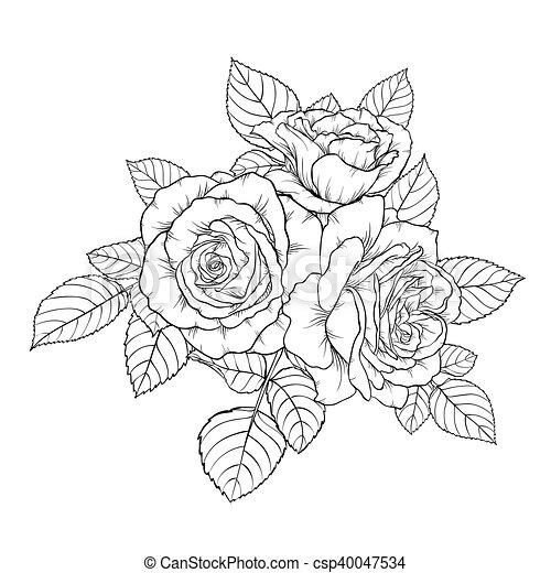 vecteurs de beau bouquet rose isol fond noir monochrome blanc csp40047534. Black Bedroom Furniture Sets. Home Design Ideas