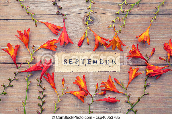 Word SEPTEMBER printed on vintage paper with wreath frame with crocosmia flowers