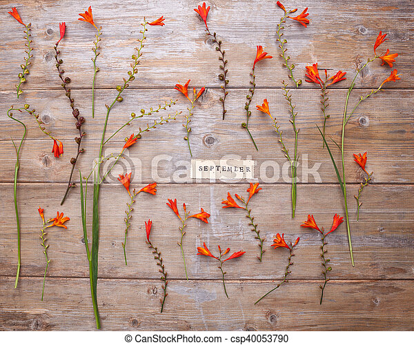 SEPTEMBER printed on retro paper with wreath frame with crocosmia flowers on an old wood
