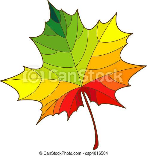 Maple leaf - csp4016504