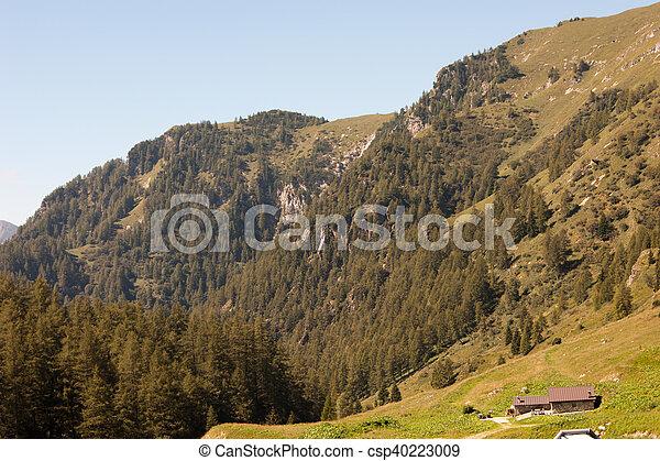 Landscape of mountain alps - csp40223009