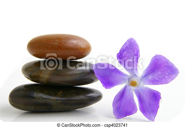 Smooth stones stacked next to small purple flower with dew drops - csp4023741