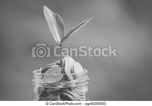 save money for investment concept with filter effect blabk and white style