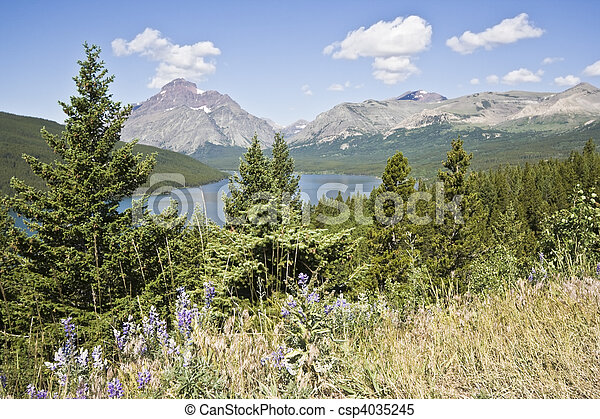 Vista of Glacier National Park  - csp4035245