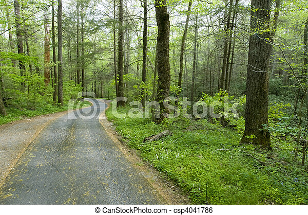 Country Road Stock Image Instant Download Csp4041786