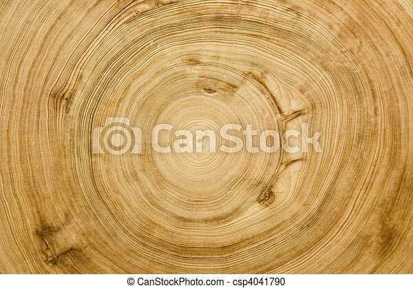 cut log woodgrain texture - csp4041790