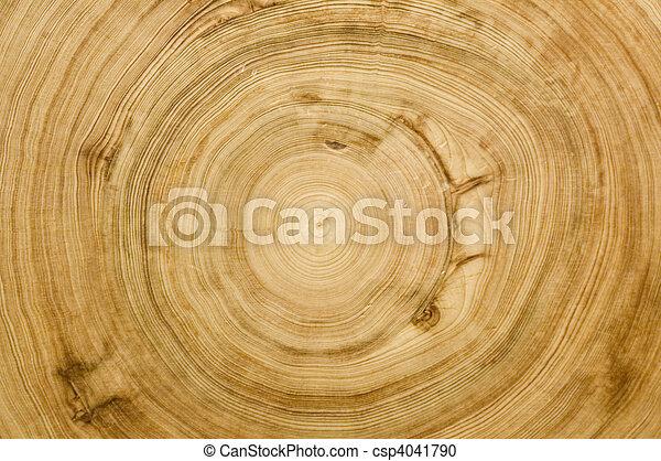 cut log woodgrain texture - csp4041790