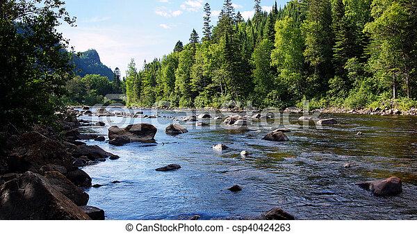 Salmon river landscape - csp40424263