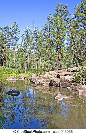 Billy Creek Pinetop, Arizona - csp4045086