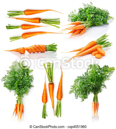 set fresh carrot fruits with green leaves - csp4051960
