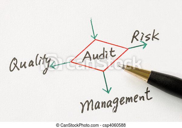 Performing an audit - csp4060588