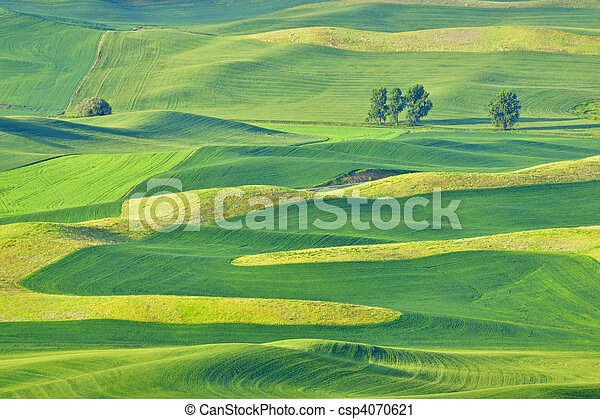 Palouse farm and hill patterns. - csp4070621