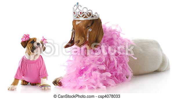 spoiled animals - csp4078033