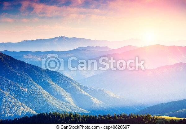 Majestic panorama of green mountains with sunny beams. Dramatic scene. National Park, Carpathian, Ukraine, Europe. Beauty world.