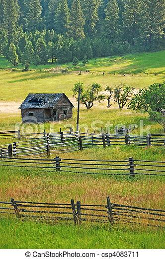 Little old shack in meadow - csp4083711