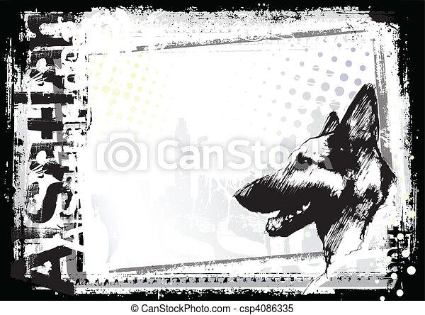 alsatian dog backgorund - csp4086335