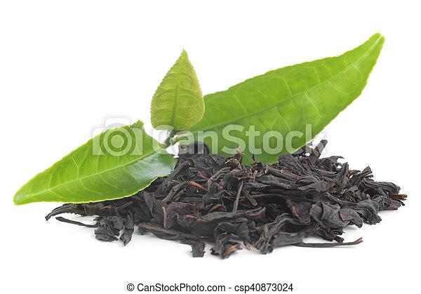 Black tea with green leavas - csp40873024