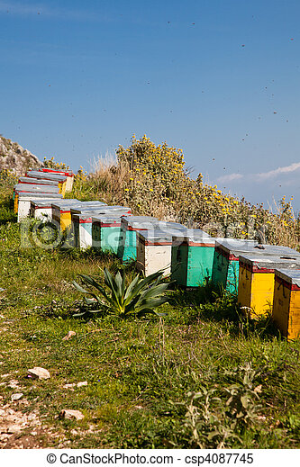 Beehives in summer - csp4087745