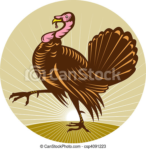 Wild turkey walking side view done in retro woodcut style with sunburst in background - csp4091223