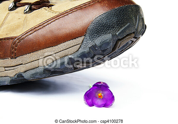 Big shoe about to step on  a small flower (man and the environment) - csp4100278