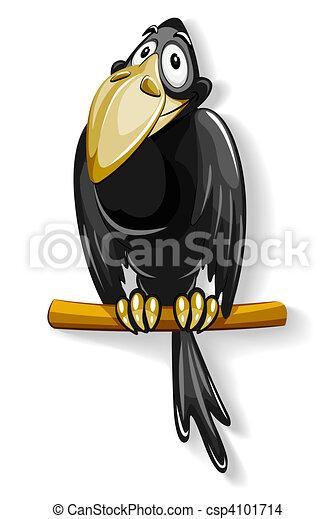 nice black crow sitting on pole - csp4101714
