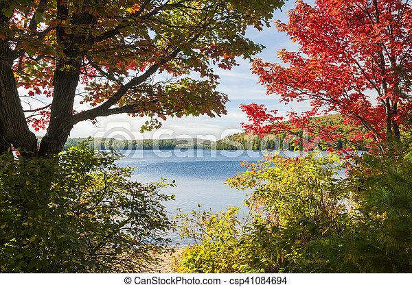 Autumn lake - csp41084694