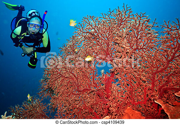 Scuba diver - csp4109439