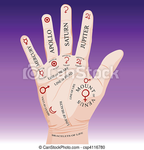 Palm Reading Palmistry - csp4116780