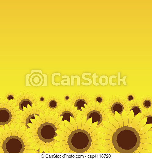 Summer meadow, sunflowers background for your design - csp4118720