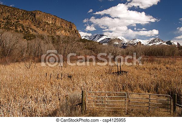 Colorado Scenics - csp4125955