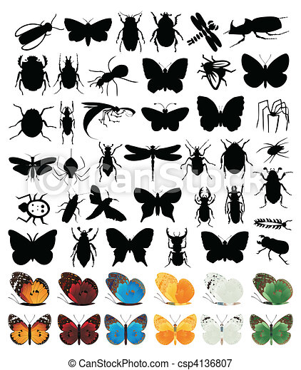 The big collection of insects of different kinds. A vector illustration - csp4136807