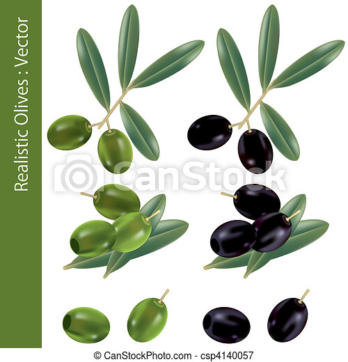 Realistic Olives - csp4140057