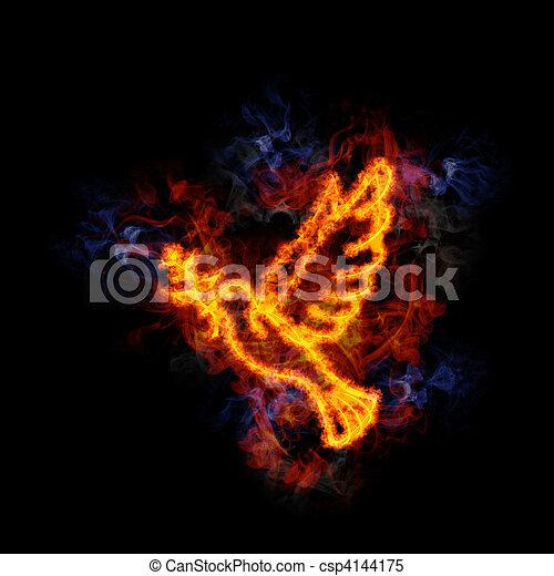 Fiery dove. - csp4144175