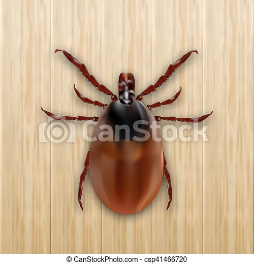 illustration vecteur de allergy parasites bois illustration arri re plan csp41466720. Black Bedroom Furniture Sets. Home Design Ideas
