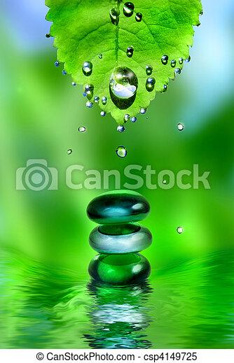 équilibrage,  Spa, brillant, pierres, à, feuille, et, eau, gouttes, sur, vert, fond - csp4149725
