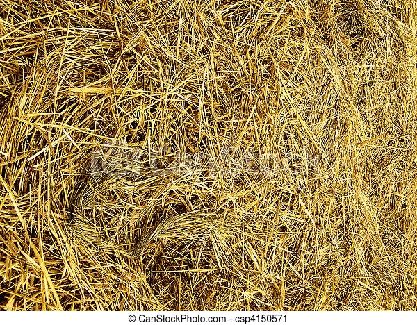 Straw texture - csp4150571