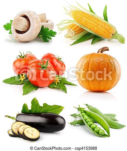 蔬菜, 白色, 集合, 被隔离, 水果 - csp4153988