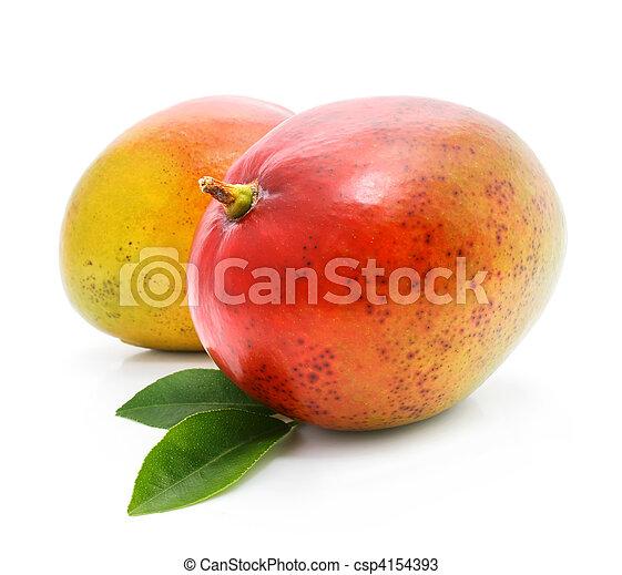 fresh mango fruits with green leafs - csp4154393